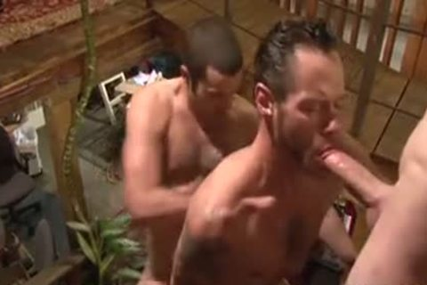 banging Around Tthis guy house - Damon Doggs cum Factory