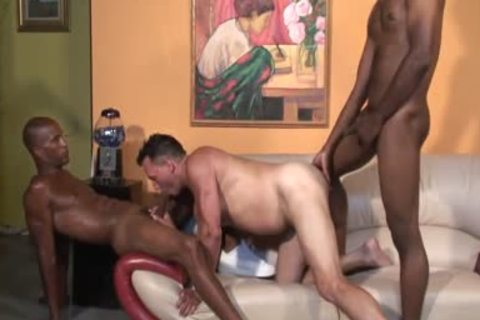 stupid White chap sucking dark cocks
