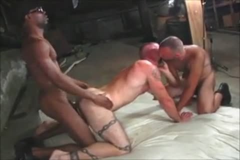 Chase Coxxx Collection, Part 2