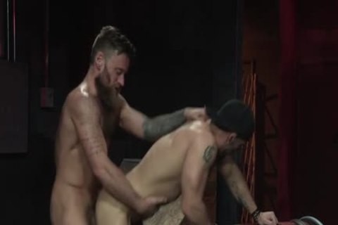 Muscle Bear a bit of arse With cumshot